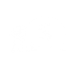 An icon of conversation bubbles with one on the right focusing on a dollar sign.